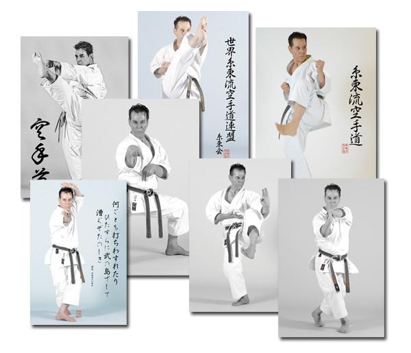 7Posters-KaratePoses-By-SenseiTanzadeh