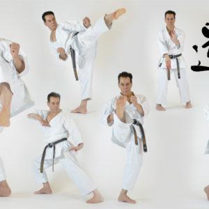 FullColor-KaratePoses-By-Sensei-Tanzadeh